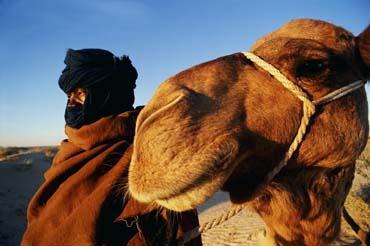 Тунис. Экскурсии. Сахара.