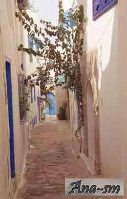 Тунис. Экскурсии. Прочие экскурсии.