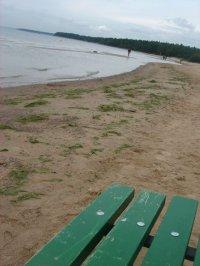 Корпоратив на пляже.
