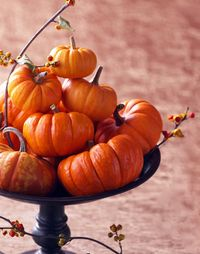 Как вырезать тыкву на Хеллоуин