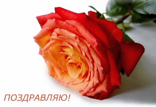 С днем рождения, дорогая Настенька!